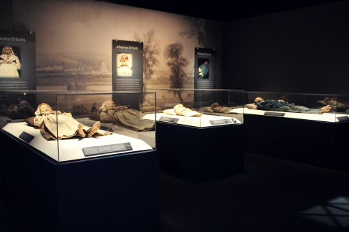 Mummies of the World Family