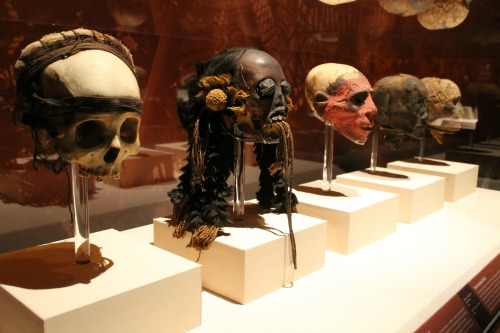 Mummies of the World Skulls