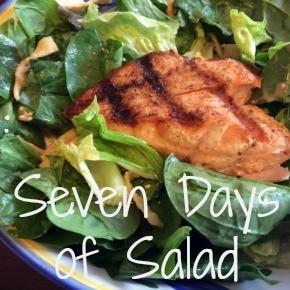 Seven Days of Salad {11.16.14}