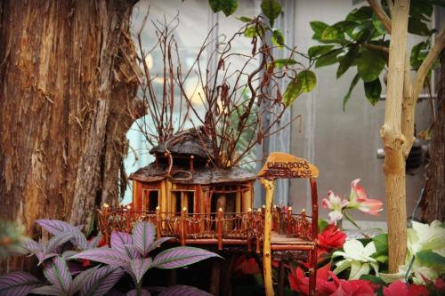 Krohn Conservatory Everybody's Treehouse
