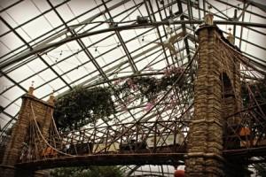 Krohn Conservatory Holiday Show  Magic & Mistletoe
