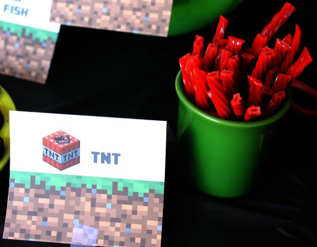 Minecraft Birthday Party TNT